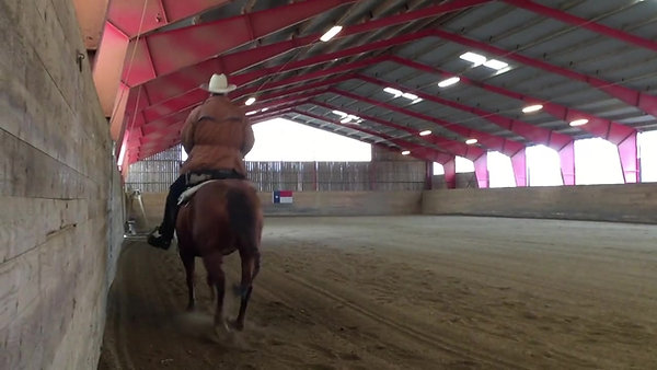 Sven-åke Wahlström - Cowboy Showreel