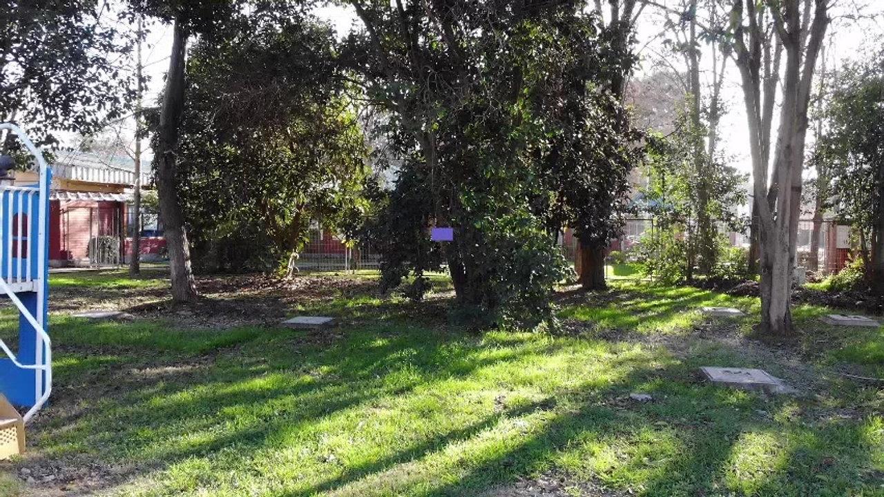 Colegio del Valle