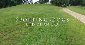 Sporting Dogs: End of an Era