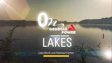 On Lakes