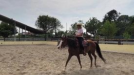 FM Horse Dream Farm: Cavalli da passeggio