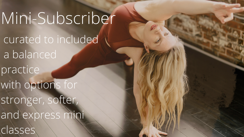 Mini Member / Monthly Subscription