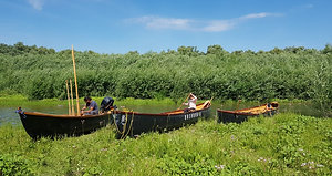 Tur ghidat în Delta Dunării
