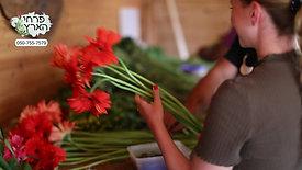 חנות פרחים גוש עציון