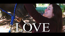 Talk to Gina Series | Love