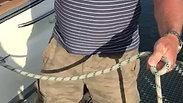 Palstek - Knoten