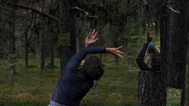 SITE-SPECIFIC | Skogen där inom