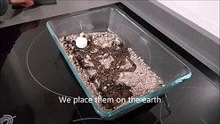 video plasencia