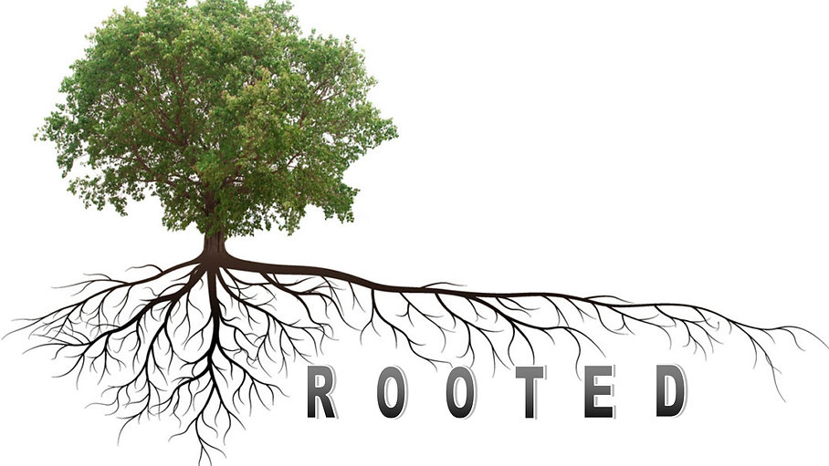 Rooted Sermon Series