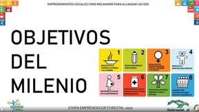 Emprendimientos sociales como mecanismo para alcanzar los ODS por Cristian Ortíz