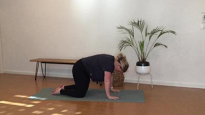 Pilates with Abby Dolphin