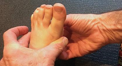 Arche antérieure du pied