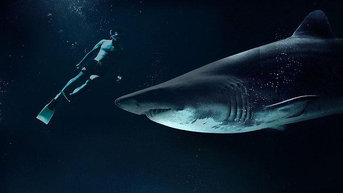 Podemos Salvar os Oceanos?