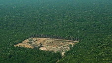 Amazonia desforestation