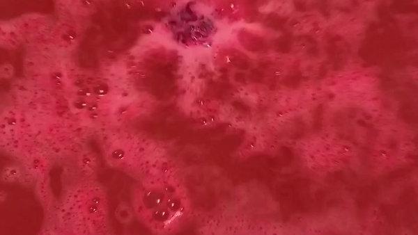 Black Raspberry Vanilla Cupcake Fizzy