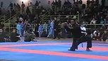 AMV Coupe d'Ermont - déc 2008 - Bai Quyen  -Style Kim Hô (Tigre Jaune - YouTube (360p)