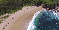 Point Lobos Travel Edit