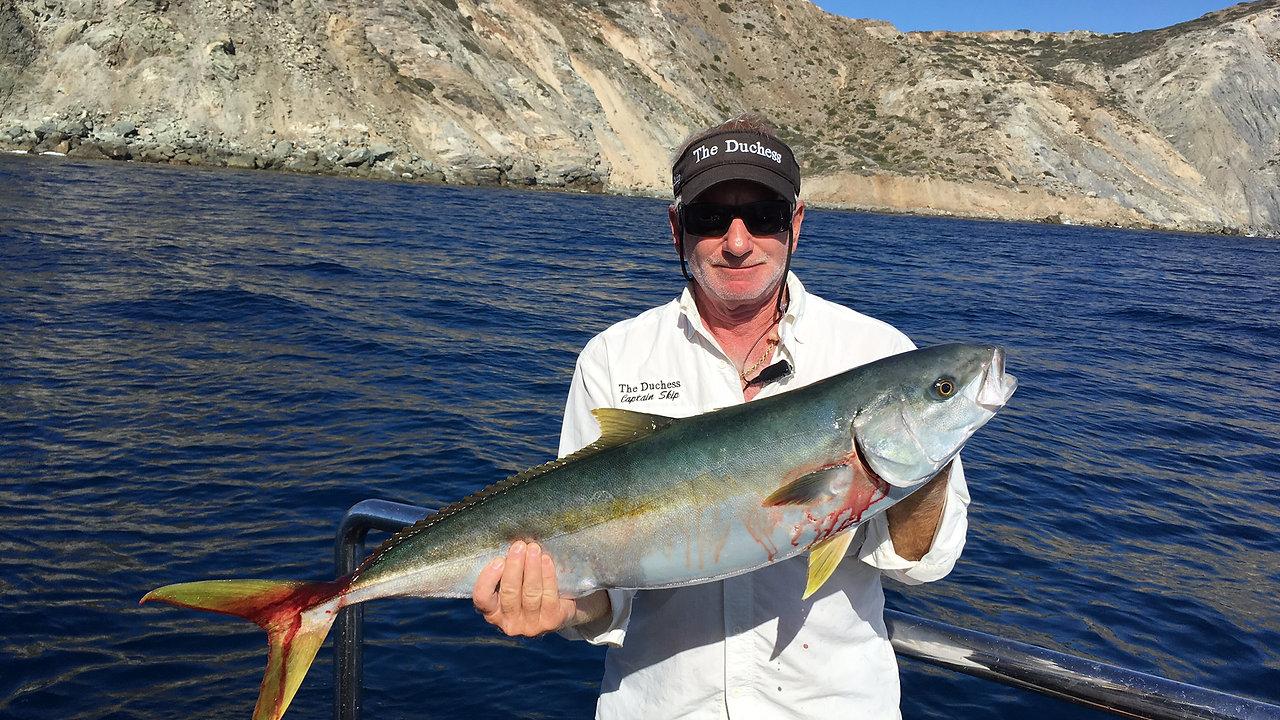 The Duchess Yacht Fishing Videos
