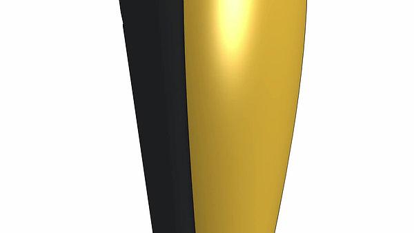 Hawk Model