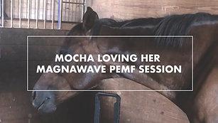 Mocha Loving Her MagnaWave PEMF Session