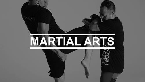 Martial Arts Vault