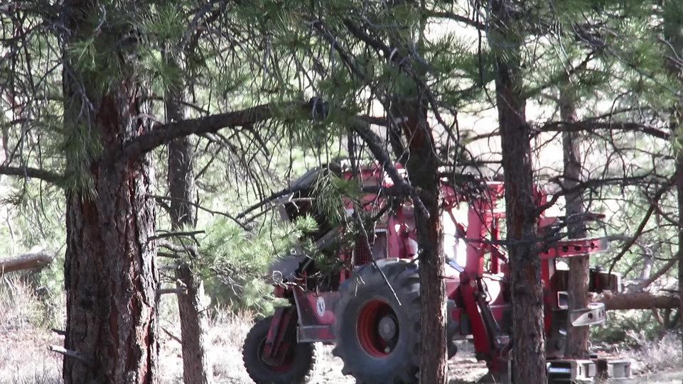 Morbark Tree Sheer