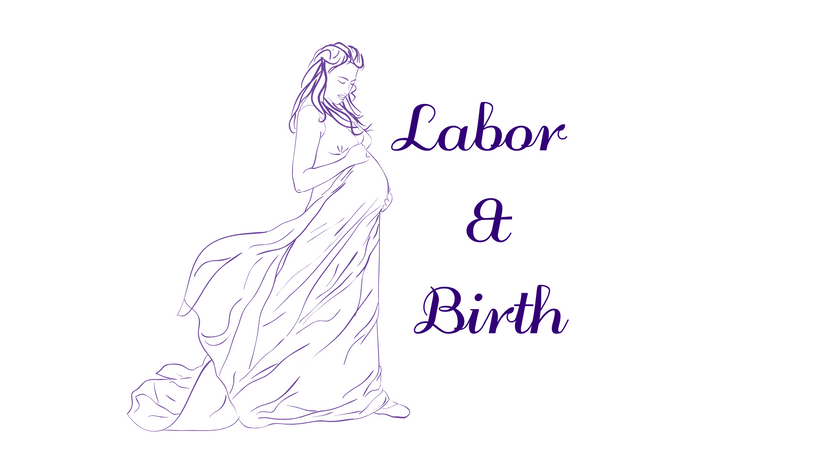 Labor & Birth