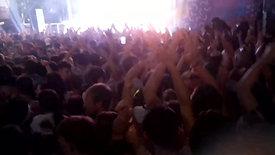 Crowd Wild