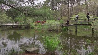 The Yard at Mytoi Gardens