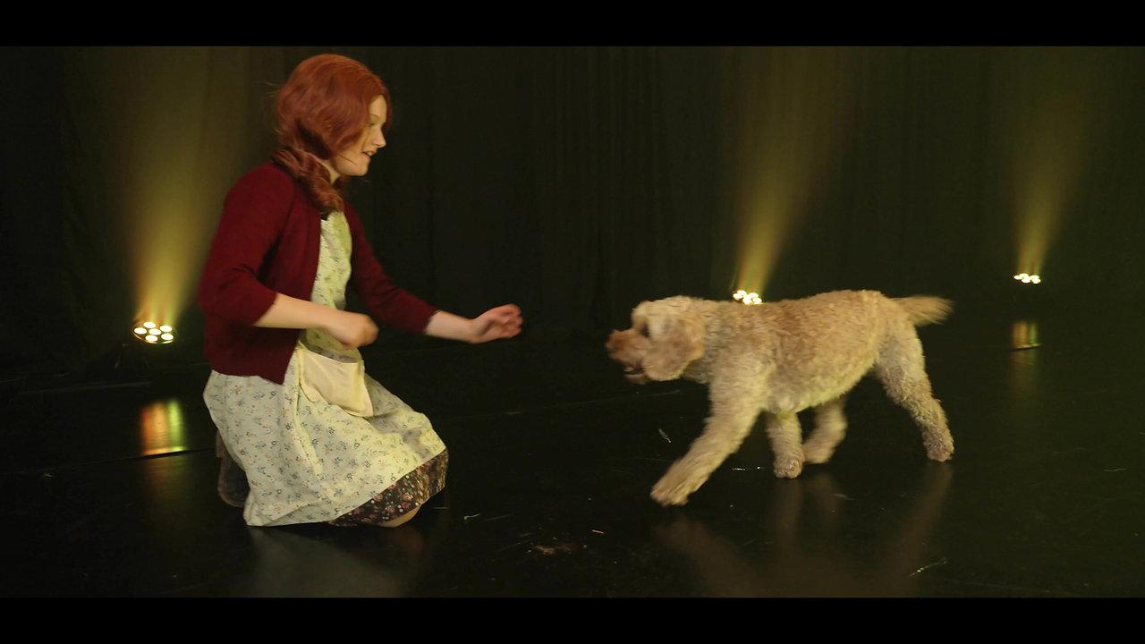 New Annie Trailer