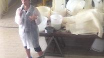 Visita a una fábrica de Parmesano en Parma