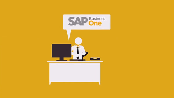 SAPB1_Compete_Solution