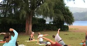 Donation Yoga in the Park!