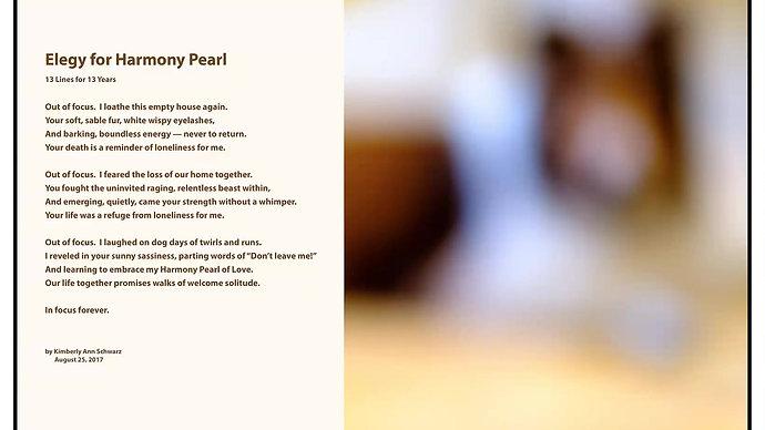 Elegy For Harmony Pearl by Kimberly Ann Schwarz