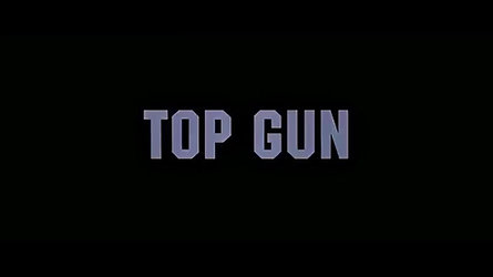 TOP GUN /DCS World