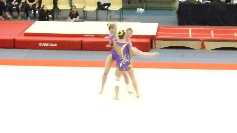 Compétitions Performance 2017