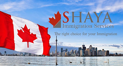 Shaya Immigration Services