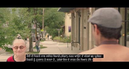 Punjabi Subtitles - Short