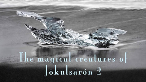 The Magic Creatures of Jökulsárlón 2