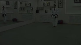 Karate. Shotokan. The examination program 10 kiu. www.budo-shotokan.ru