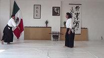 Tsuki:Kote gaeshi