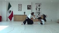 Katate Tori-Kokyu nage
