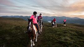 Sunset with Lakeland Horse Trails