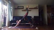 Twist & Arm Balance Sequence