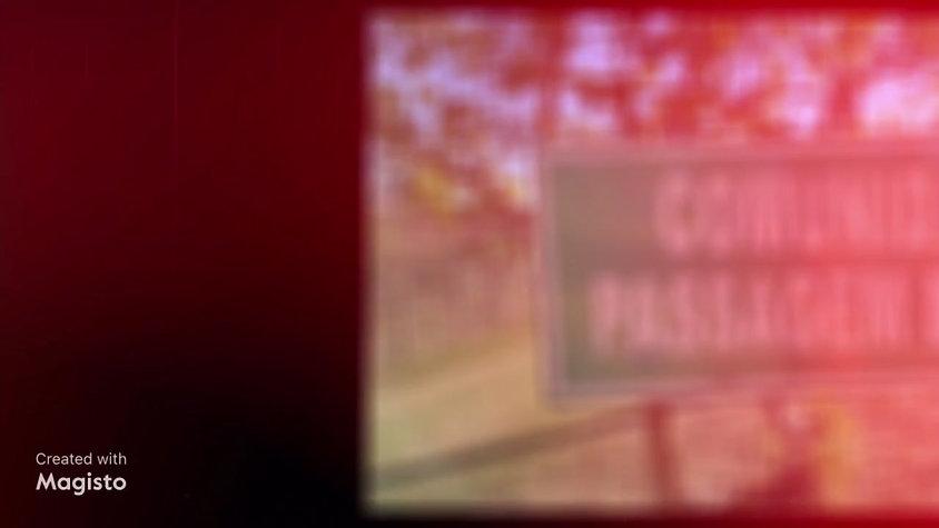 Video 01 PGR