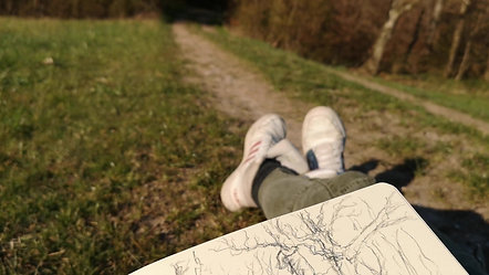 Skizzenbuch im Wald