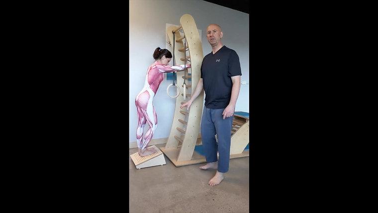 SF Teachers Videos: Chapter 1 Lower Legs/Feet