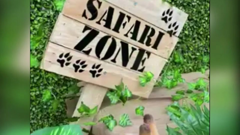 Safari Themed Party Decor