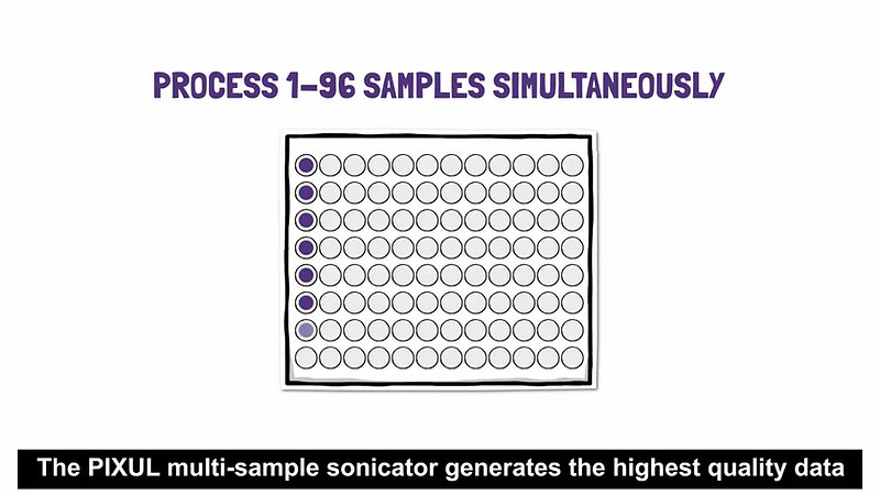 Advanced Sonication with the PIXUL Multi-Sample Sonicator