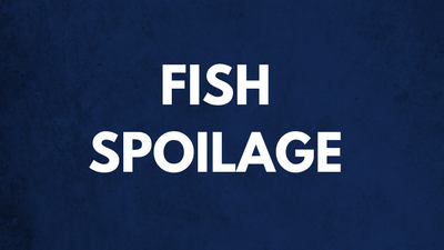 Fish Spoilage - Fish Right, Eat Right Tutorial 4